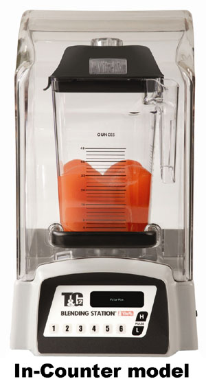 Vitamix Touch & Go 2 In-counter Blender